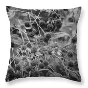 Black And White Sun Flowers  Throw Pillow