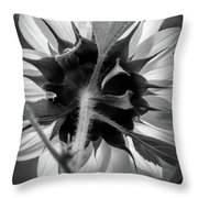 Black And White Sunflower 5 Throw Pillow