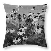 Black And White Susans Throw Pillow