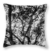 Black And White Tree 2 Throw Pillow