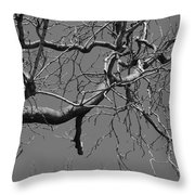 Black And White Tree Branch Throw Pillow