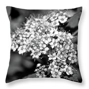 Black And White Twinkle Throw Pillow