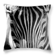 Black And White Zebra  Throw Pillow