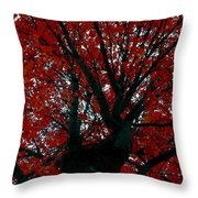 Black Bark Red Tree Throw Pillow