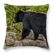 Black Bear Boar Taking In The Sights Throw Pillow