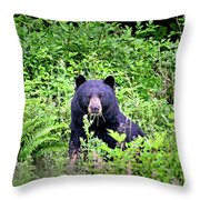 Black Bear Eating His Veggies Throw Pillow