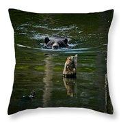 Black Bear Pictures 104 Throw Pillow