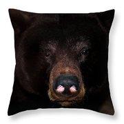 Black Bear Sniff Throw Pillow