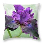 Black Bearded Iris Throw Pillow
