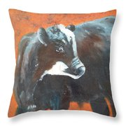 Black Beauty Throw Pillow by Jean Ann Curry Hess