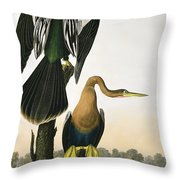 Black Billed Darter Throw Pillow by John James Audubon