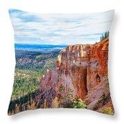 Black Birch Canyon Throw Pillow