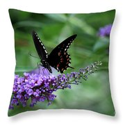 Black Butter Throw Pillow