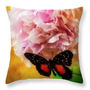 Black Butterfly On Peony Throw Pillow