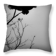 Black Buzzard 6 Throw Pillow