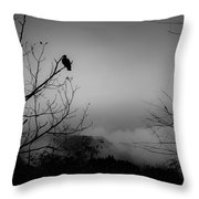 Black Buzzard 9 Throw Pillow