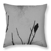 Black Buzzard Moon Throw Pillow