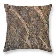 Black Canyon Geology Throw Pillow