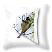 Black-capped Chick-a-dee Throw Pillow