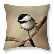 Black-capped Chickadee Portrait Throw Pillow