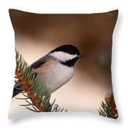 Black-capped Cickadee II Throw Pillow