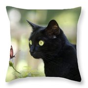 Black Cat And Butterfly Throw Pillow