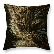 Black Cat Drawing Throw Pillow
