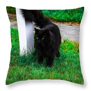 Black Cat Maine Throw Pillow