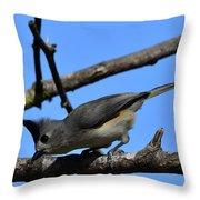 Black Crested Titmouse Throw Pillow