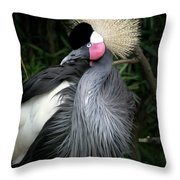 Black Crowned Crane Throw Pillow