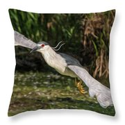 Black-crowned Night Heron In Flight Throw Pillow
