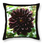 Black Dalia  Throw Pillow