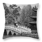 Black Dragon Park Throw Pillow