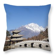Black Dragon Pool Park Throw Pillow