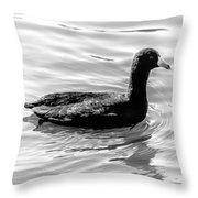 Black Duck Throw Pillow
