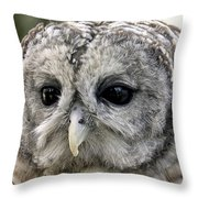 Black Eye Owl Throw Pillow