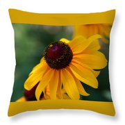 Black Eye Susan Throw Pillow
