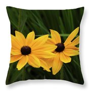 Black-eyed Susan Blossoms Throw Pillow