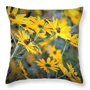 Black-eyed Susan Texturized Throw Pillow