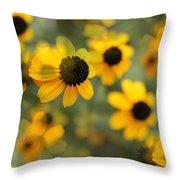 Black Eyed Susan Floral Throw Pillow