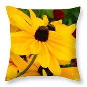 Black-eyed Susan Floral Throw Pillow