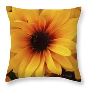 Black Eyed Susan Medley V3 Throw Pillow