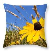 Black-eyed Susan With Grass Throw Pillow
