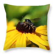 Black Eyed Susan With Wasp Throw Pillow