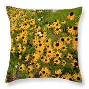 Black Eyed Susans-1 Throw Pillow