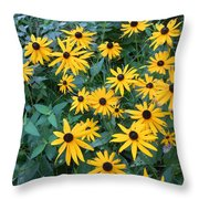 Black Eyes Of The Sun Throw Pillow by Carrie Viscome Skinner