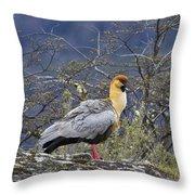 Black-faced Ibis Throw Pillow