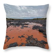 Black Falls Crossing Throw Pillow