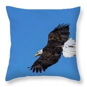 Black Feather Bald Eagle Throw Pillow
