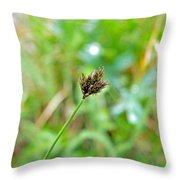Black Grass Throw Pillow